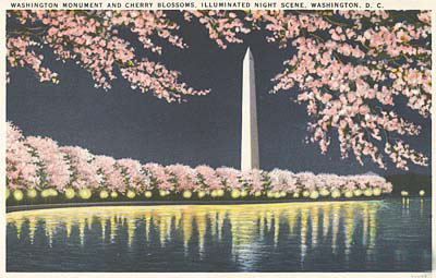 Postcard Image of the Washington Monument
